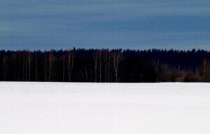 Igaunijas valsts 102. gadskārtai veltīts Latvijas dievturu sadraudzes pasākums