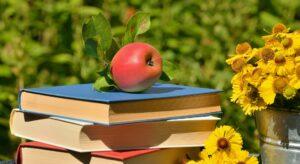 Grāmatas lasīšanai vasarā
